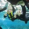 青の洞窟には行くことができませんでしたが・・・お魚いっぱいのサンゴビーチでシュノーケル!!の画像