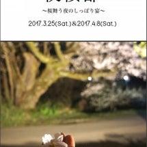 夜桜部☆★☆<最終告…