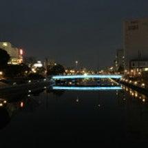 徳島で光と鳥を楽しむ