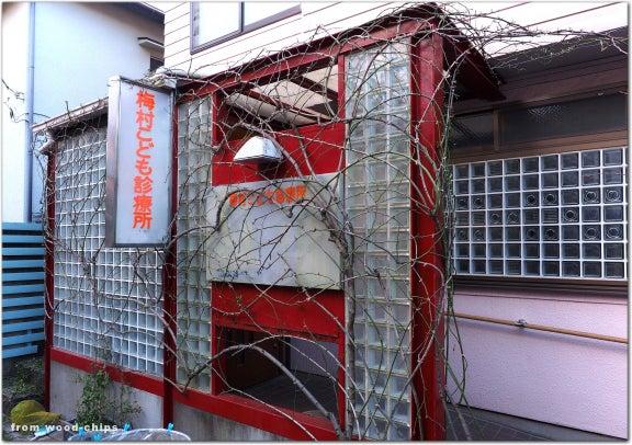 西東京市 バラの剪定 庭仕事