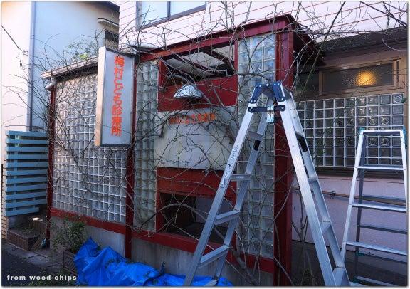 バラの誘引 剪定 管理 西東京市