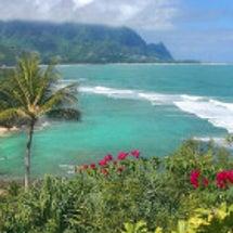 ハワイ島はヒーリング…