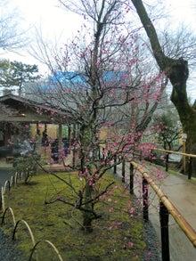 梅園の茶屋