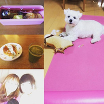 nagisaのお弁当といつもの訪問レッスンでの感謝♡の記事に添付されている画像