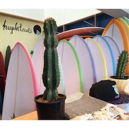 画像 ☆Haydn  Lewis Surfboards☆ の記事より 4つ目