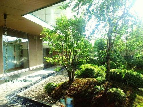 横浜ベイシェラトン木の花庭