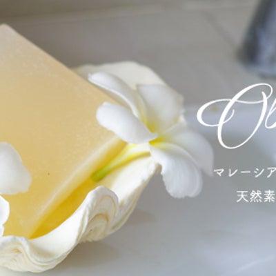 感染したら恐怖の頭部白癬(しらくも)にもなまこ石鹸の記事に添付されている画像