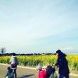 ソレイユの丘