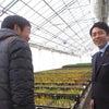 富山県のチューリップ農家視察と学生向けセミナーでの講演の画像