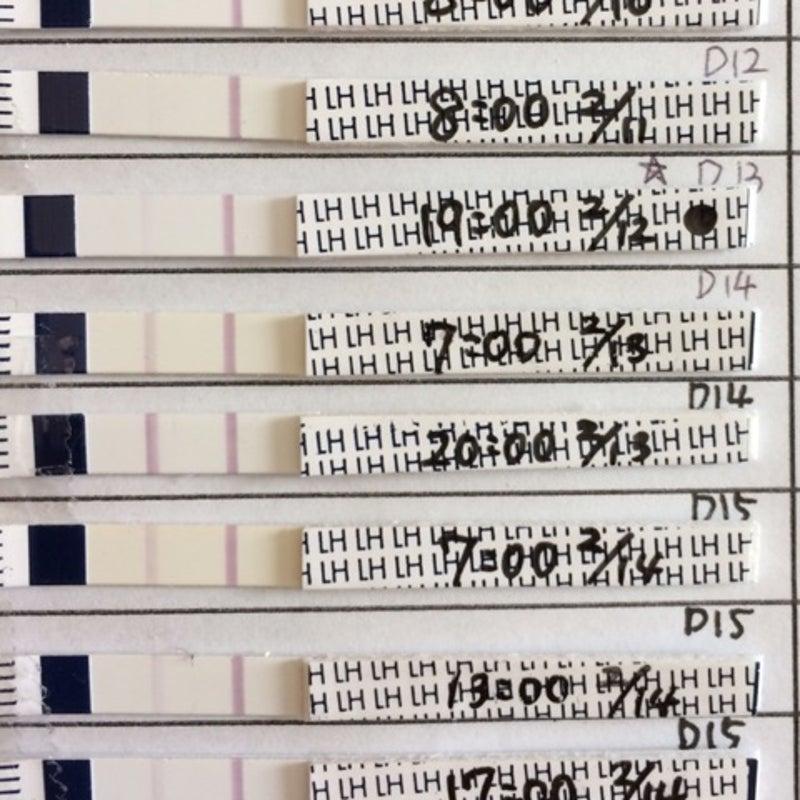 ドクターチョイス 排卵検査薬