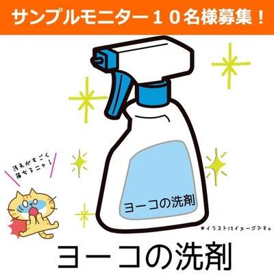 一軒家丸洗いの記事に添付されている画像