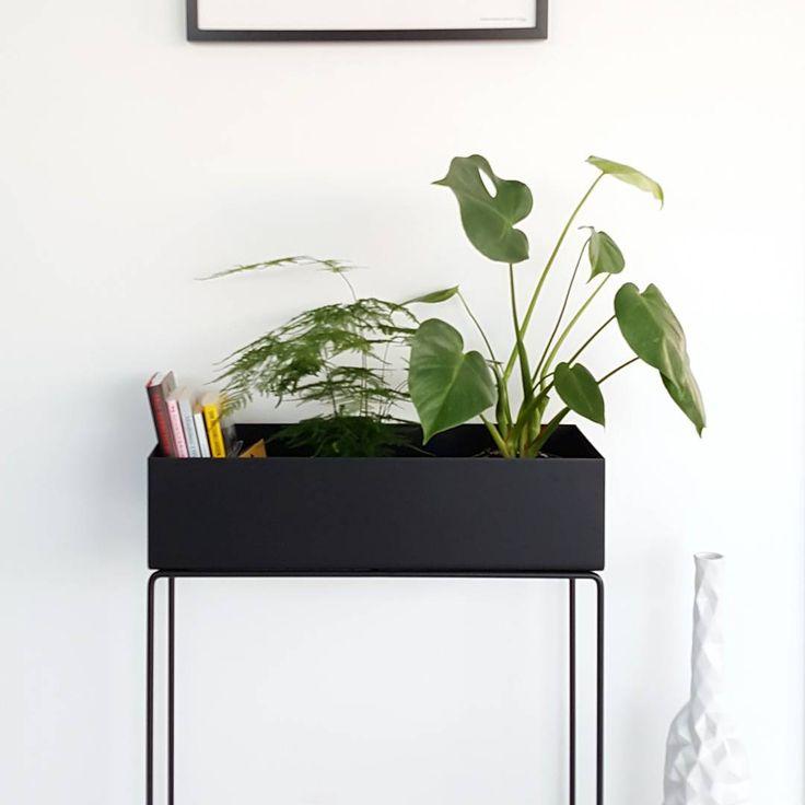interior still life. Black Bedroom Furniture Sets. Home Design Ideas