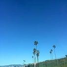 LAの抜けるような青い空の記事より