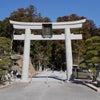 小國神社はのびのびとした穏やかな聖地♪パワースポット御神木!静岡県の画像