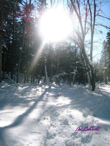 冬の羊蹄山♡