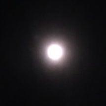 満月に入りますよ