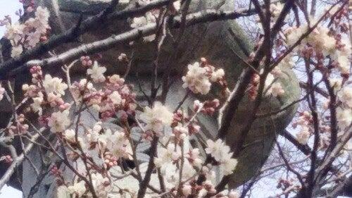 PicsArt_03-13-04.00.42.jpg