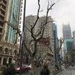 中国上海の街並み(馬…