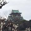 大阪城梅林の画像