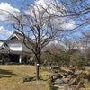 京都に行って、、、の画像