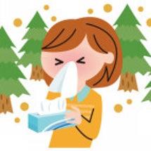花粉症は、腸内環境を…