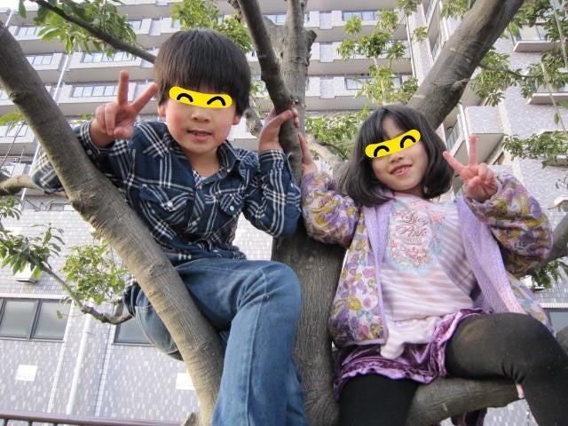 o0640048013890830315 - ★3月15日(水)★toiro東戸塚