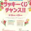 横浜店限定★ラッキーくじチャンスの画像