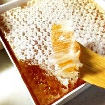 蜂蜜にハマっています