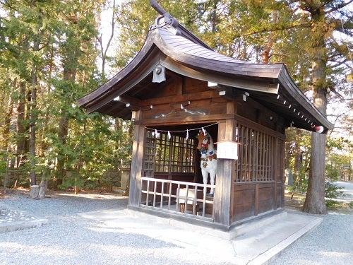 神社の春と空8