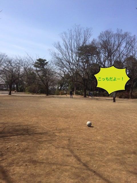 o0480064013894143679 - 3月18日(土)☆toiro新吉田☆