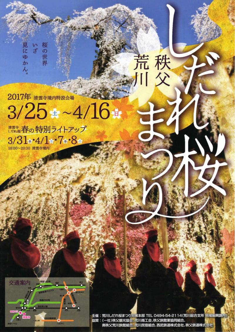秩父市荒川 清雲寺にて「しだれ桜まつり」が開催されます