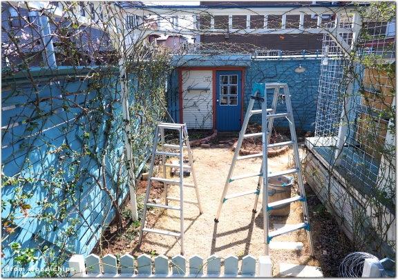 バラを楽しむ庭づくり wood-chips garden