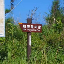 久米島が好きになる旅…