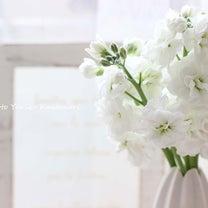 ダイソーの花を選ばない優秀花瓶!の記事に添付されている画像