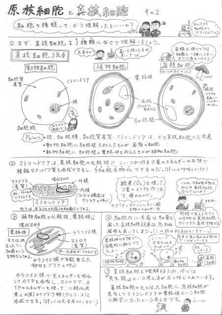 原核 の 細胞 真 違い 核 と 細胞