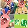 ☆松戸中央 公園☆の画像