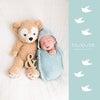 赤ちゃんの等身大フォトアワード2017の画像