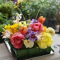 【新規募集します】3月 小さなお花の教室♪の記事に添付されている画像