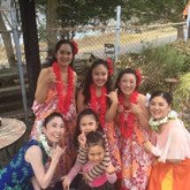 愛知池桜祭り