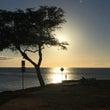 ハワイ移住しませんか…