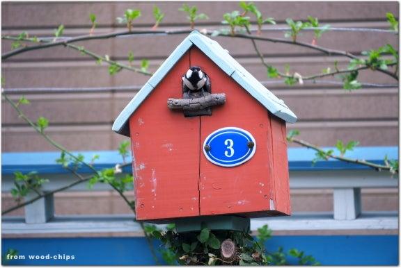 Bird house シジュウカラ バードハウス