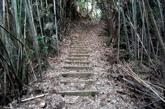 【写6】田中城