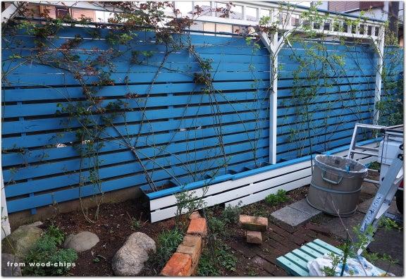 バラの庭 フェンス 誘引 塗り替え