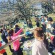 桜舞い散る4月