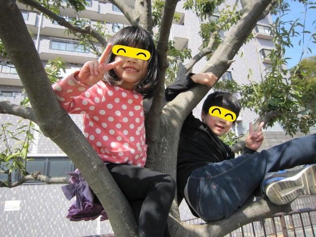 o0640048013906854118 - ★4月5日(水)★toiro東戸塚