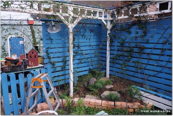 バラの庭 パーゴラ フェンス 誘引