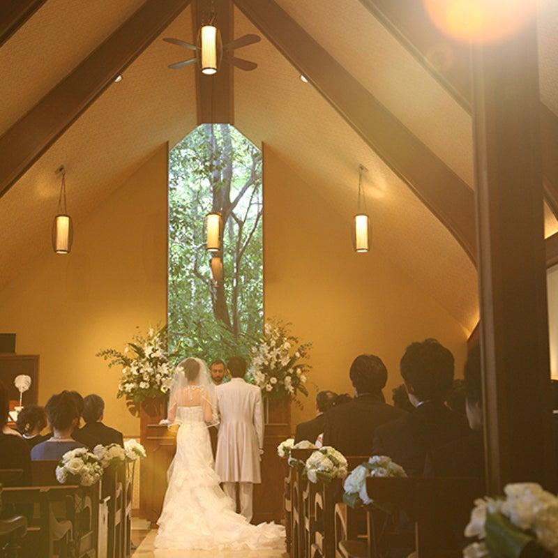 cc1b6fcc694af 結婚式準備 人気記事(一般)19ページ目|アメーバブログ(アメブロ)