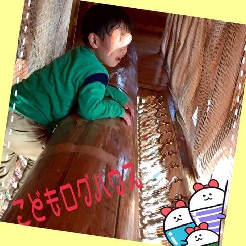 o0480048013908562073 - ☆4月7日 (金) ☆toiro西谷