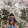◇Cherry blossoms are in full bloom !の画像