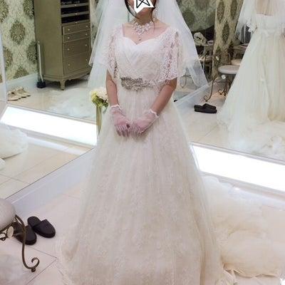ドレス試着 その5 フォーシスの記事に添付されている画像